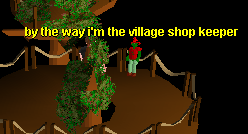 Tree Gnome Village General Store.png