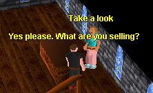 Legends' Guild General Store.png