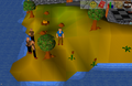 Tutorial island7.png